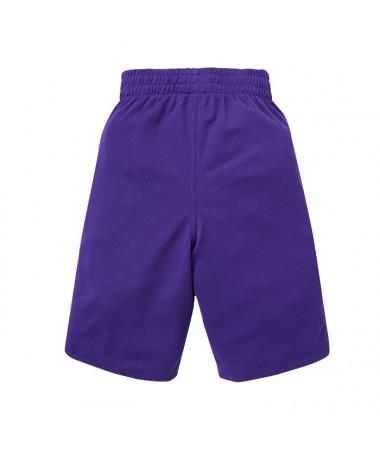 Adidas NBA Short L.A. Lakers Winter Hoops Rev (AA77781)