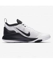 Nike LEBRON WITNESS II (011)