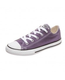 Converse CHUCK TAYLOR ALL STAR SEASONAL LOW TOP (663632C)