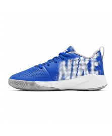 Nike TEAM HUSTLE QUICK 2 (GS) (400)